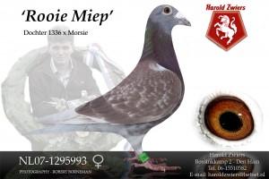 NL07-1295993 红色党派 Miep