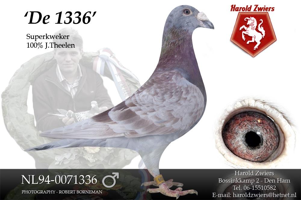 NL94-0071336 De 1336
