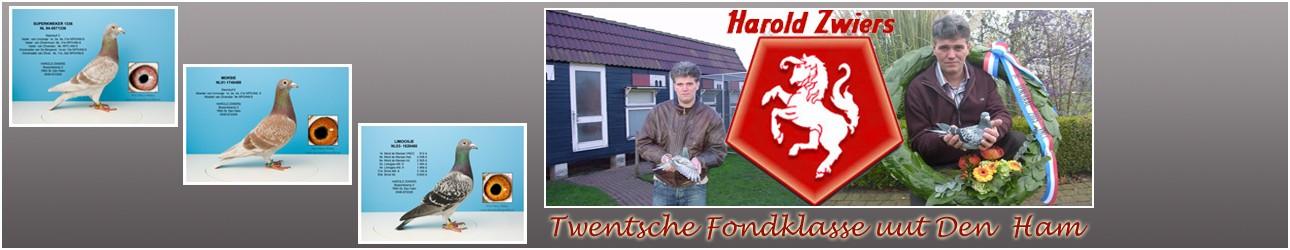 Harold Zwiers – Den Ham